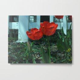 Tulip Family Metal Print