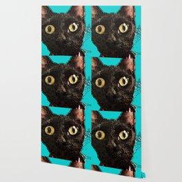 Kismet Kitty Wallpaper