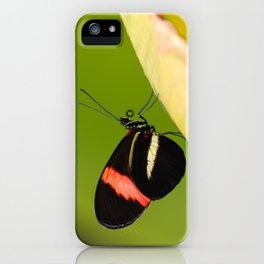 Butterfly - Climbing the hill iPhone Case