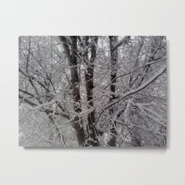 stuck in a tree Metal Print