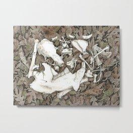 Assortment of Bones No. 2 Metal Print