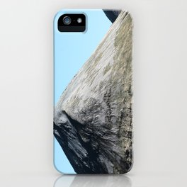 Skye - iPhone Case