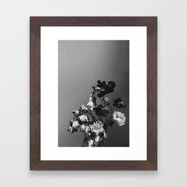 Dead Flowers Framed Art Print