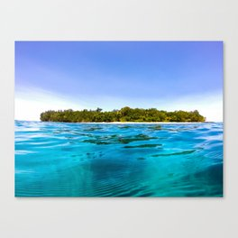 Tropical water Canvas Print
