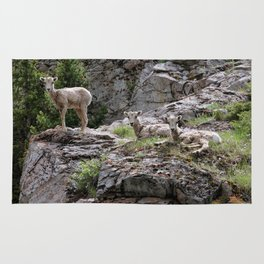 Mountain Goats in the Pass Rug