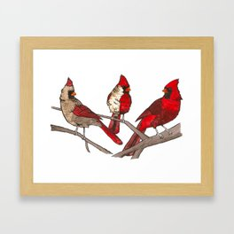 Northern Cardinals Framed Art Print
