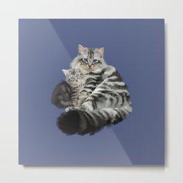 Avalanche the cat and Av the kitten Metal Print