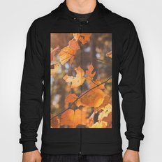 red autumn leaves Hoody