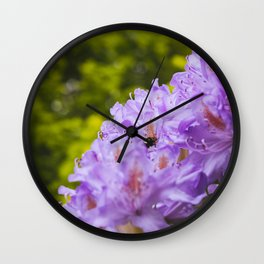 Bumble bee collecting pollen from a Rhododendron flower. Wall Clock