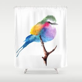 The Lilac-breasted Roller Shower Curtain
