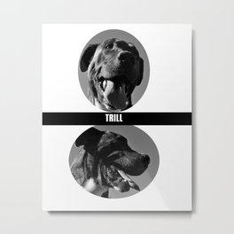 Trill Pitbull Metal Print