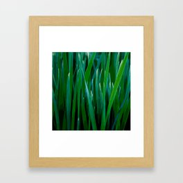 Love grass Framed Art Print