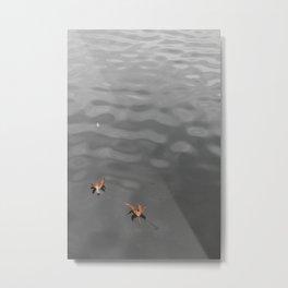 Leaves floating in pond - Westlake Village, California Metal Print