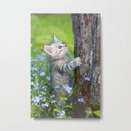 Cute kitten Metal Print