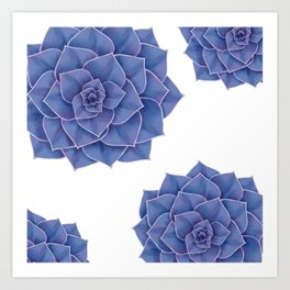 Elegant Big Purple Echeveria Design Art Print