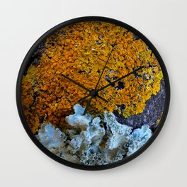 Tree Bark Pattern # 6 with Orange and Blue Lichen Wall Clock