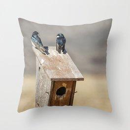 Two Tree Swallows Throw Pillow