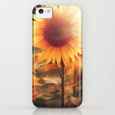Sunflower. iPhone 5c Slim Case