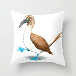 Blue Footed Booby Throw Pillow
