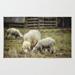 The Farmyard Rug
