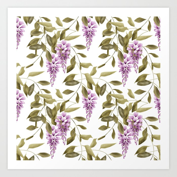 The Branches Of Wisteria .  White background . Art Print