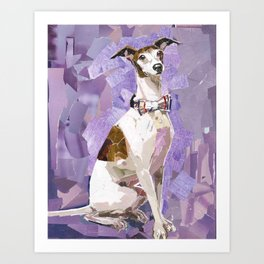 Vito the Italian Greyhound Art Print