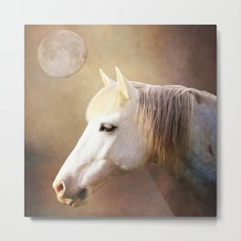 Wild Horse Moon Metal Print