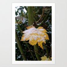 Snowy Leaf Art Print
