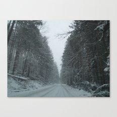 Safe House Canvas Print