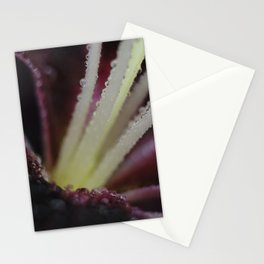 wet Tiny Poem Lily 001 Stationery Cards