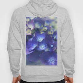 In the Morning Mists Hoody