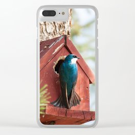Blue Swallow Photography Print Clear iPhone Case