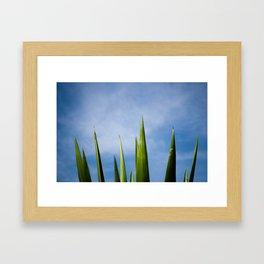 Blue Sky Framed Art Print