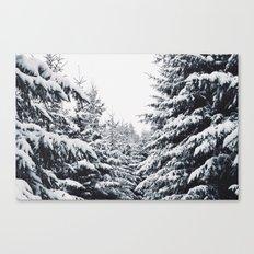 SNOWFOREST Canvas Print
