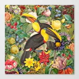 Toucans 2 Canvas Print
