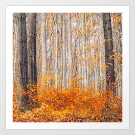 orange autumn Art Print