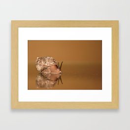 Gary The Snail Framed Art Print