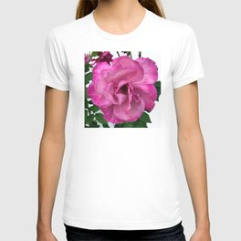 Bodacious Pink Rose | Large Pink Flower | Nature Photography T-shirt