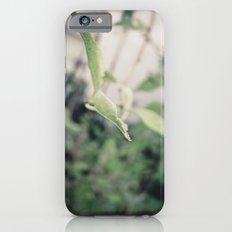 Reach iPhone 6s Slim Case