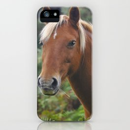 Wild Palomino Flaxen-maned New Forest Horse iPhone Case
