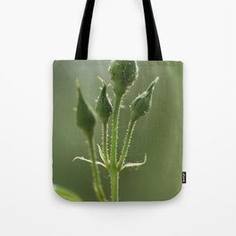 New Rose Unbloomed Tote Bag