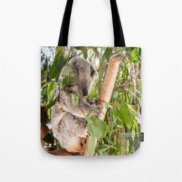 Australia's 'Native Bear', Koala, Australia Tote Bag