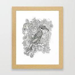Hornbill of Malaya Framed Art Print