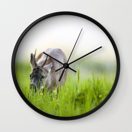 Roe Deer Grazing Wall Clock