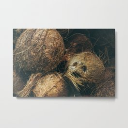 coconuts on Metal Print