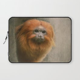 Little Golden Headed Lion Tamarin Laptop Sleeve
