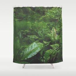Old Growth Ferns Shower Curtain
