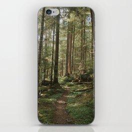 Wonderland Forest Trail iPhone Skin