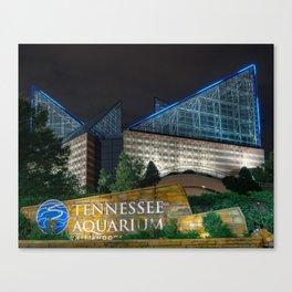 Chattanooga Aquarium for CFC Canvas Print
