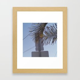 photo 11 Framed Art Print